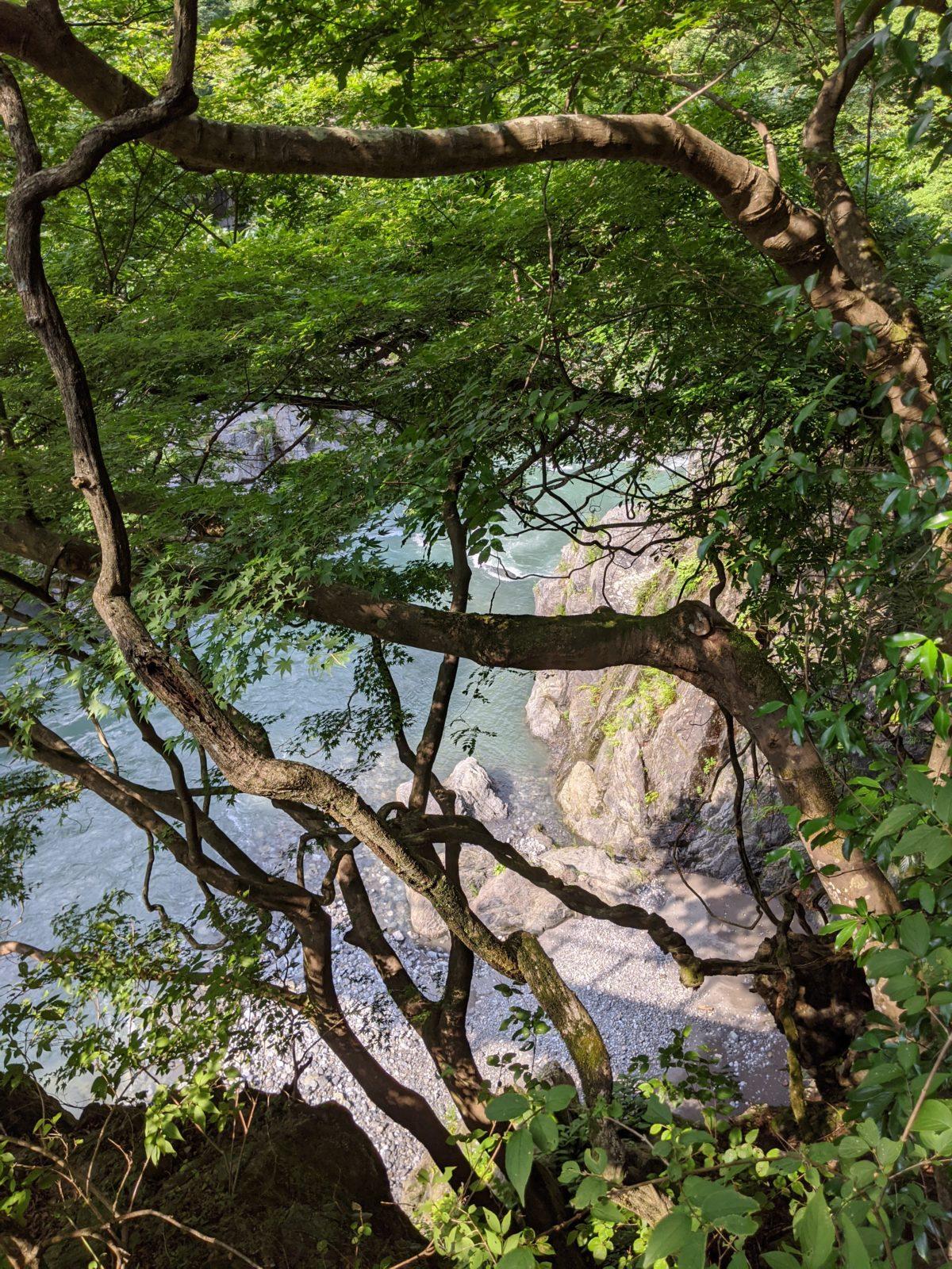 奥多摩・鳩ノ巣渓谷は冒険心がくすぐられる場所でした①インディ・ジョーンズ気分になれた!